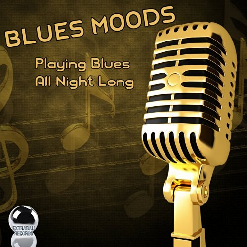 BLUES MOODS – Playing Blues All Night Long