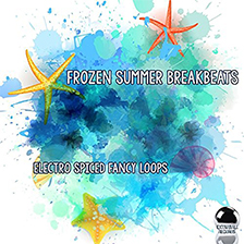 FROZEN SUMMER BREAKBEATS – Electro Spiced Fancy Loops